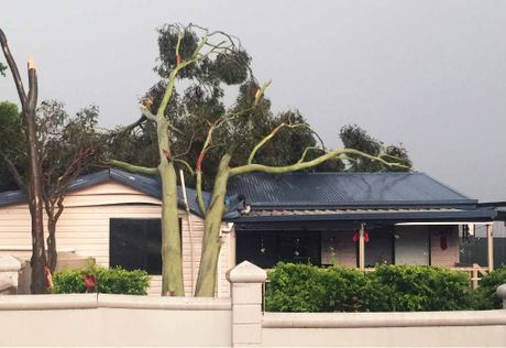 DESTRUCTIVE FORCE: This house on Brisbane Terrace in Goodna was one of several to sustain damage from falling trees on Sunday afternoon.