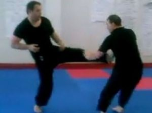 Worker's compo claim on kicked down by karate video
