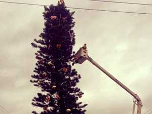 "Lismore's ""wonky"" tree shines for another Christmas"