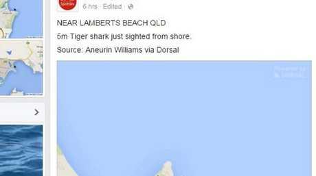 Facebook post on shark spotters website of sighting at Lamberts Beach Image: Facebook