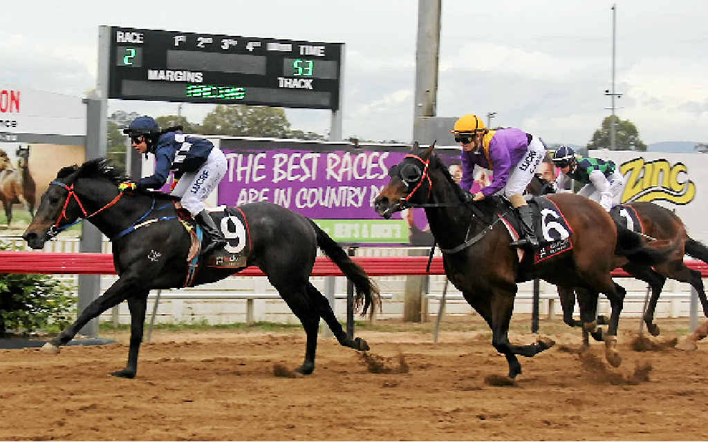 Captain Tango (9) winning at a previous meet, will race in Sunday's $30,000 Cannonball Series final at Kilcoy.