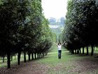 Macadamia farmer Alli Page pictured at Newrybar property called Ben Byron . photo Jacklyn Wagner