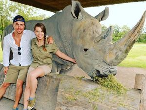 Bindi brings Dancing with the Stars to Australia Zoo