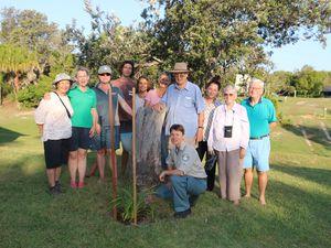 Fraser Island umbrella organisation turns 10