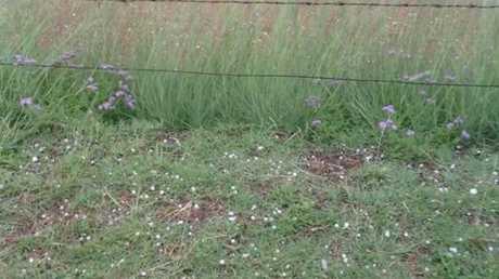 Small hailstones falling in Warwick.