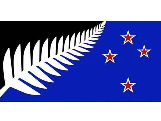 Kyle Lockwood's blue and black silver fern flag has the most preliminary votes in the flag referendum.