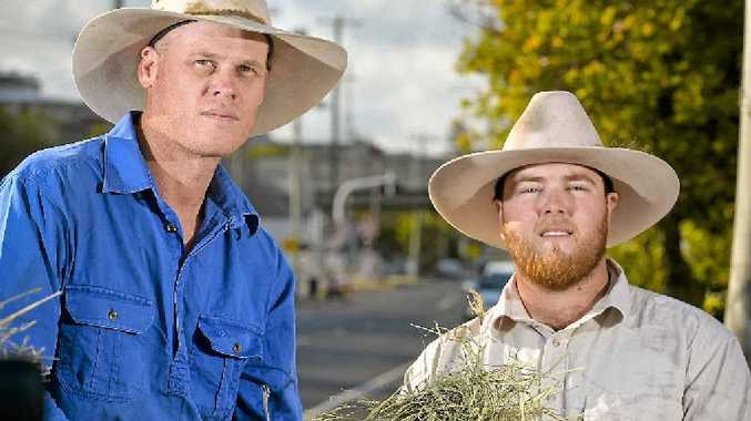 HAY RUN: Helping the drought-savaged cattle are Gene Anderson and Brad Peacock.