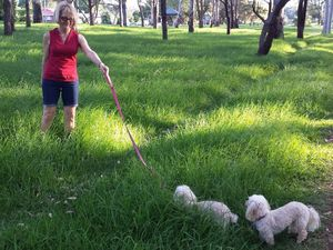 Residents say grass isn't greener for city parks