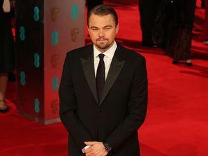 Leonardo DiCaprio's near death experiences