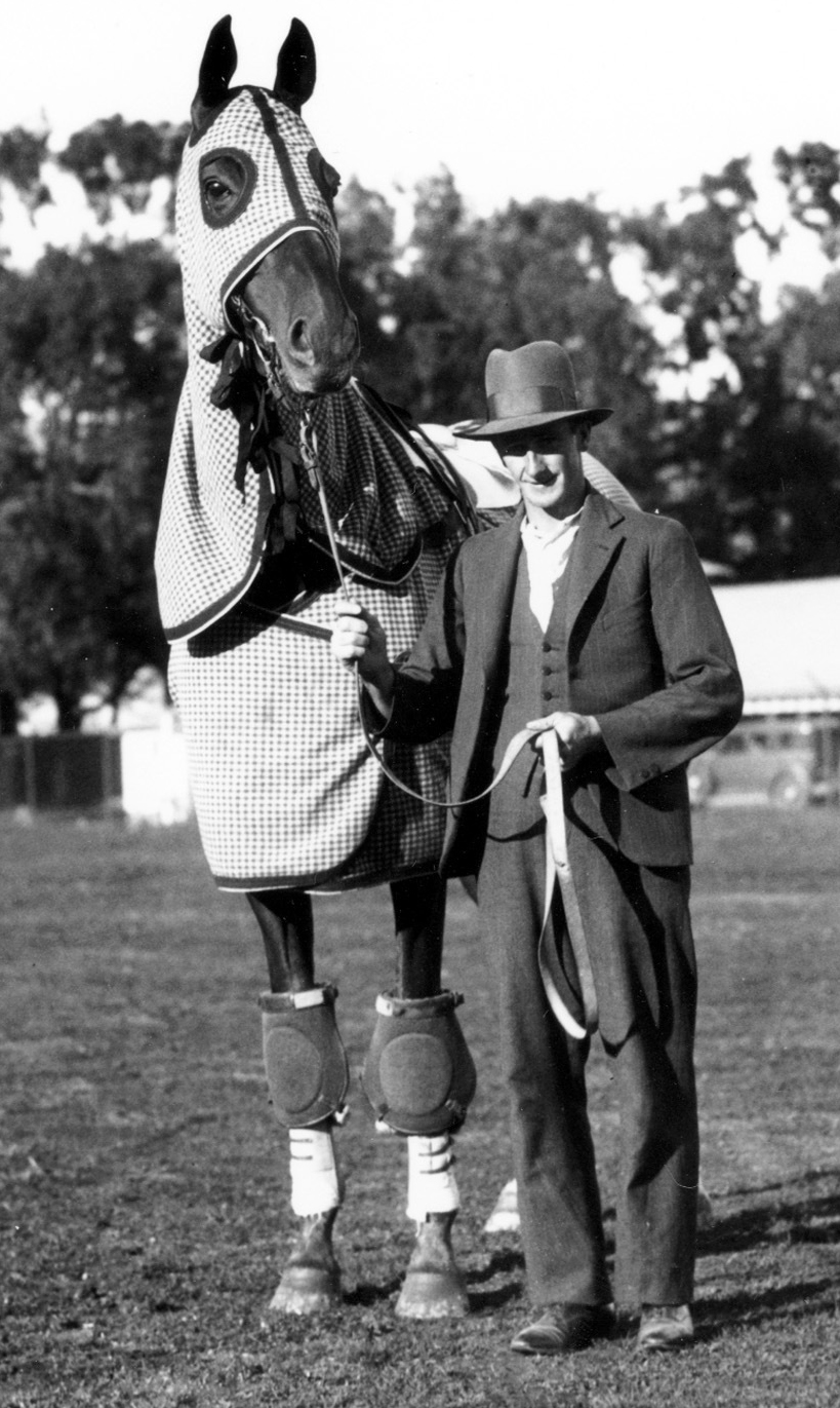 Phar Lap with his trainer Tom Woodcock on a track outside San Francisco, Ca. on January 25, 1932.