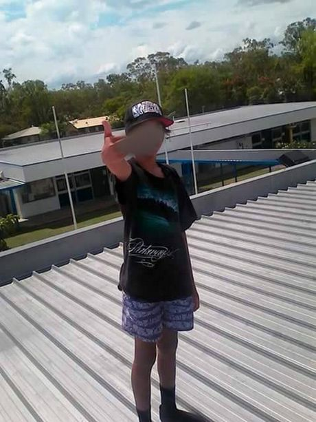 A male juvenile on the roof of Mt Archer primary school.