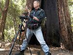 Yowie hunt almost cost researcher his life in Kilkivan