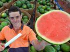 Bundy's ripper melons