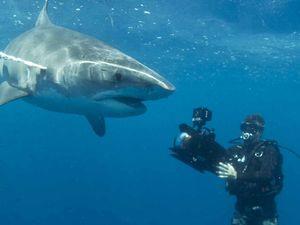 Rocky man has spent '20,000' hours working underwater