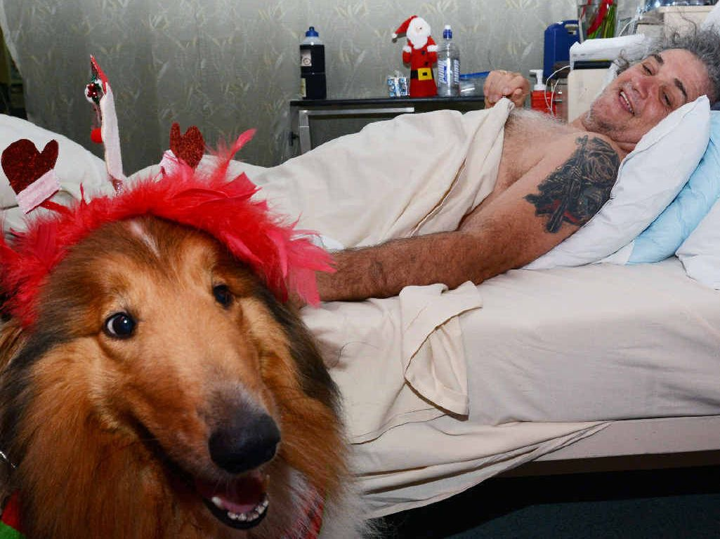 UPLIFTED: Zulu the dog visits Mackay man Terry Pepi, who is recovering at Princess Alexandra Hospital. INSET: Terry and his wife Helen Pepi.