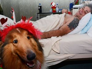 Pooch's special visit lifts spinal patient's spirits