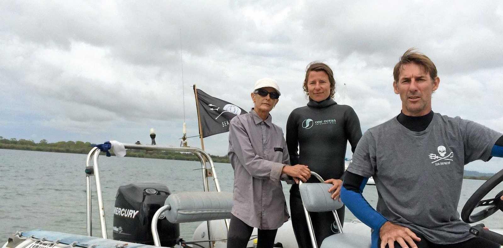 The Sea Shepherd Australia team Jann Gilbert, Kylie McGuire and Jonathan Clark  inspecting smart drum lines off Ballina and Lennox Head
