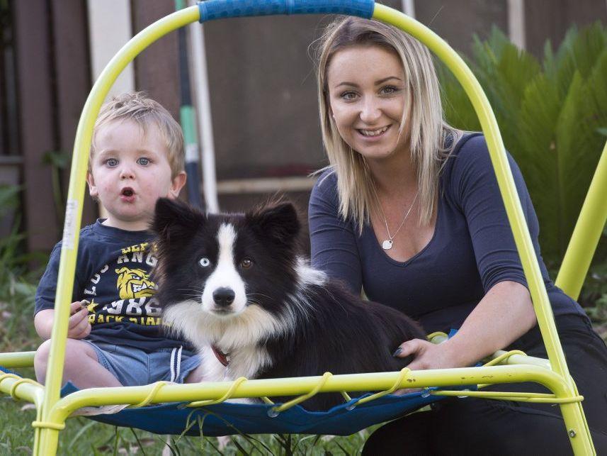 Ashleigh Osborne with son Oliver Bassett and their Border Collie Charlie.