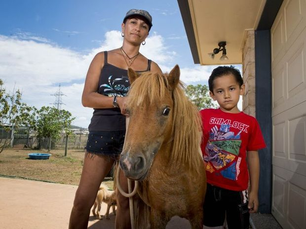 Renae Shelford together with her son Kahrlin, 6, stand by their injured miniature horses Pinky and Whisper.