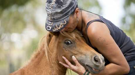 Renae Shelford with her two injured miniature horses. Photo Paul Braven / The Observer