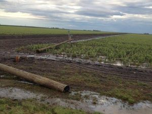 Power on after storms hit the Darling Downs