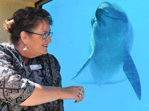 Back off Bob - Dolphin Marine Magic defends reputation