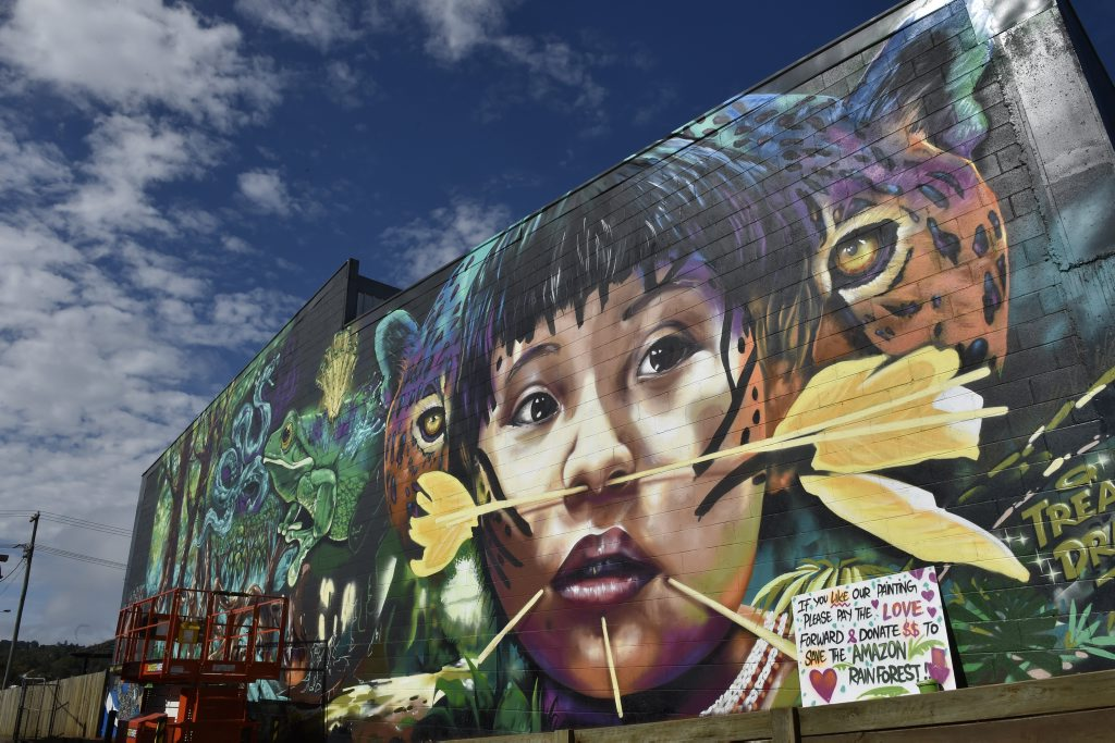 Artists continue to work on their art around the city, during First Coat.2.Travis Vinson (aka Drapl) painted a depiction of an Amazon Rainforest. Photo Bev Lacey / The Chronicle