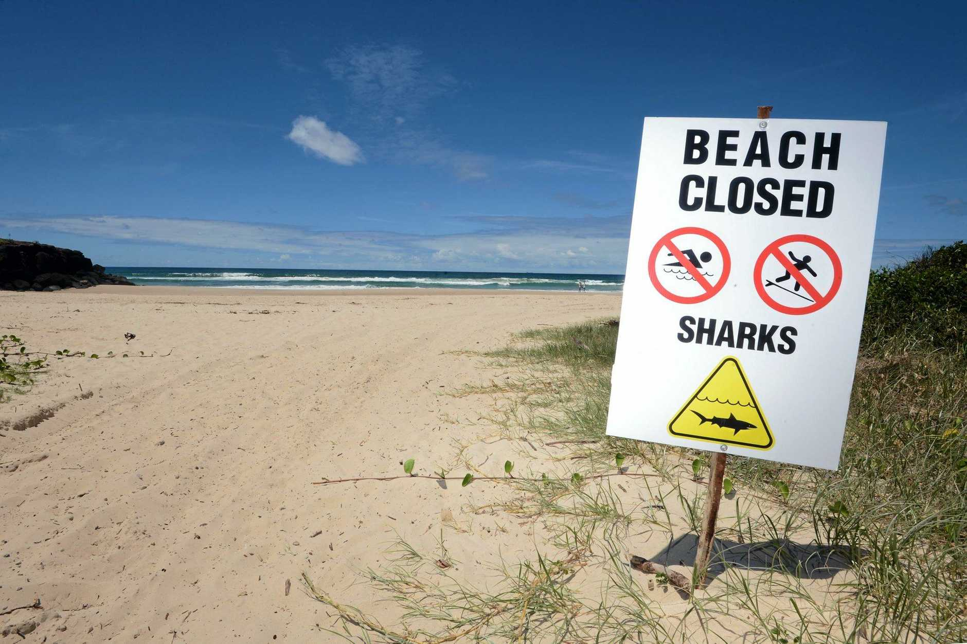 Lighthouse Beach at Ballina closed after a shark attack. Photo Cathy Adams / The Northern Star