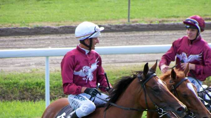 Plugger and Epic Choice are two favourites of form students for the 1530m New Year open handicap at Tweed River Jockey Club's race meet tomorrow.