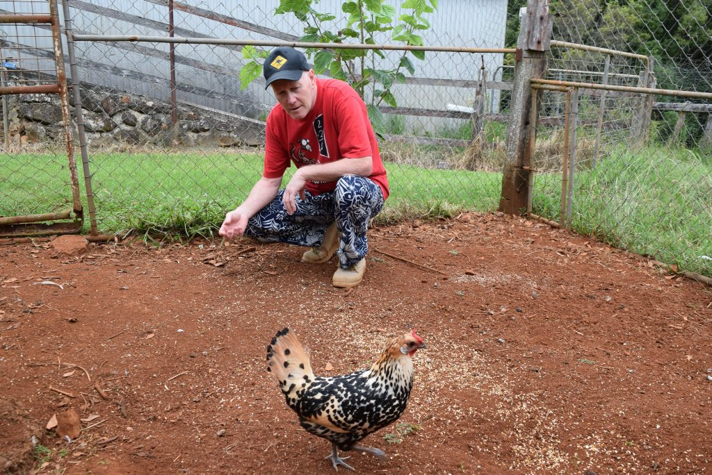 After being missing for six days David Reeve rescued his super chook 'Spocky' from a well.