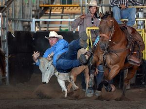 Beef City Rodeo