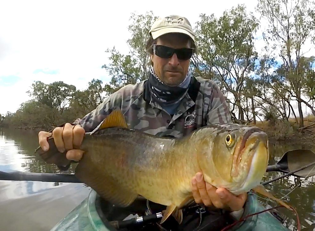 Andy Thomsen with a 72cm Saratoga from the Issac River
