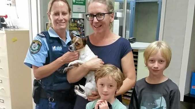 LOST AND FOUND: The Miller family in Bangalow lost their new puppy on Christmas Day and thanks to the help of the local police, little Daisy was found and returned to the very grateful family.