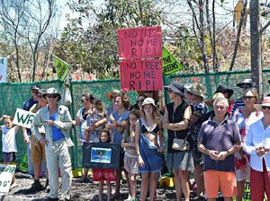 Vigil for bulldozed bushland calls for change