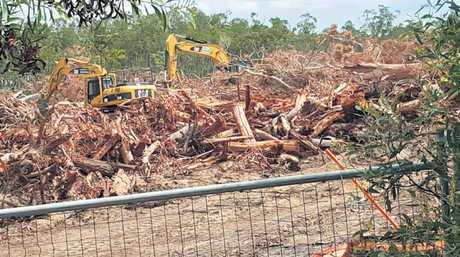 HERITAGE SHOCK: A wildlife corridor has been bulldozed.