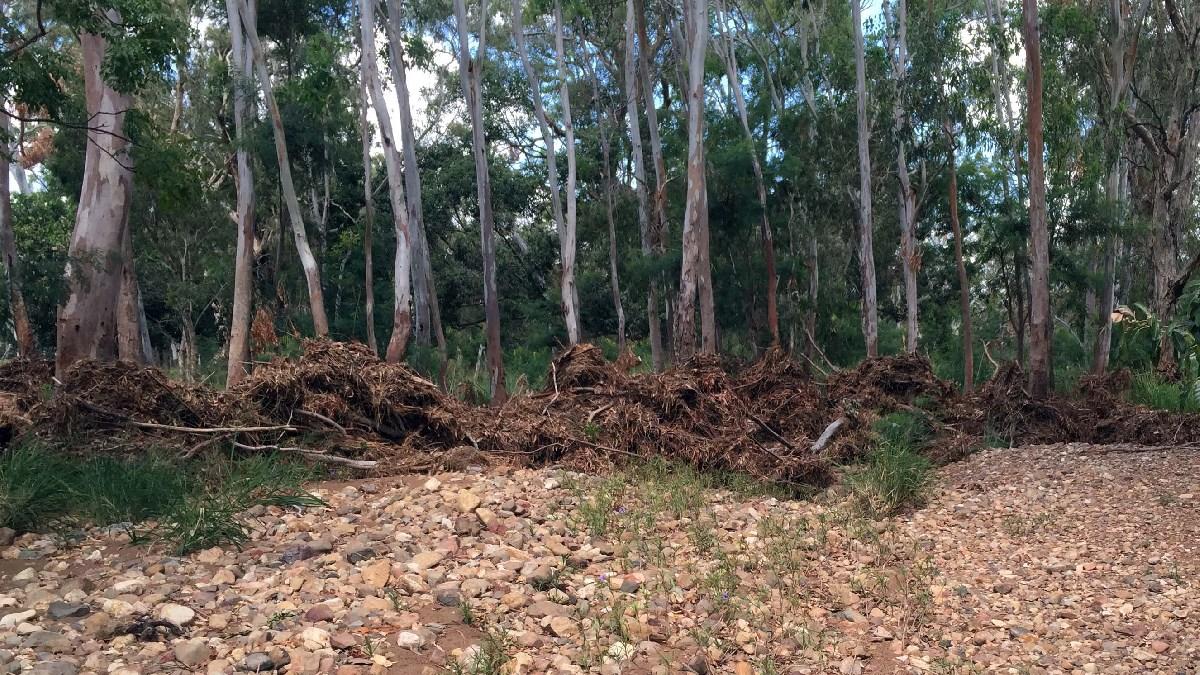Debris along Frenchman's Creek following Cyclone Marcia