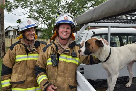 Don and Dan Harris with Joker, the dog they saved from a house fire in Dalby.