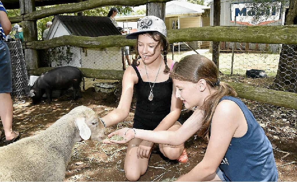 ANIMAL FUN: Jaika Croxon (left) and Nyah McGrath meet the lambs in the animal nursery at the Highfields Pioneer Village Australia Day last year.