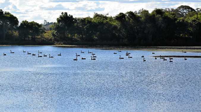 Swan Bay, near Woodburn.