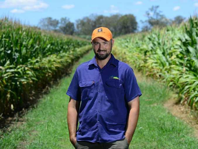 Farmers like Kalbar's Michael Rieck can take part in council's Rural Trees Initiative.