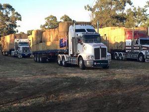 World's largest hay run