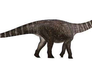 Mayor unveils proposal to bring dinosaur model to Roma