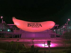 Pink Silks fever spreads far and wide around the Coffs Coast