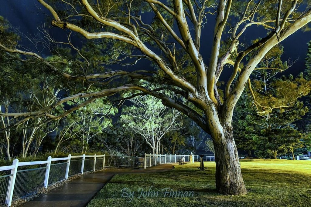 A photo of Toowoomba's iconic Picnic Point.