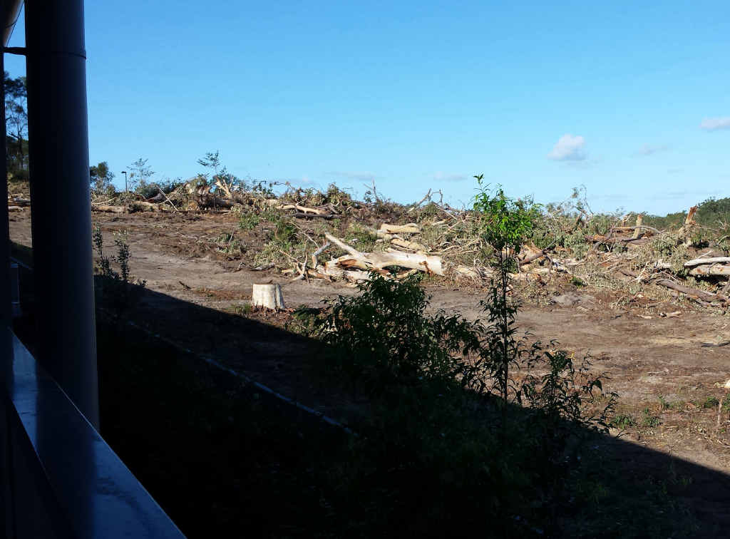 A block once home to an abundance of nature has been bulldozed.