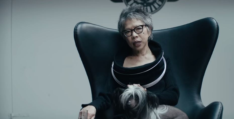 Lee Lin Chin is this year's Australia Day 'Lambassador' in a controversial advertisement.