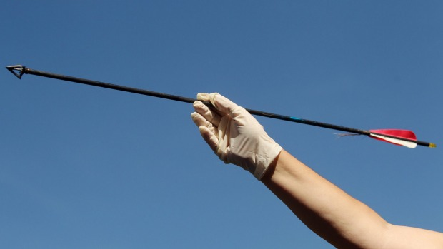 The man was shot with an arrow similar to the one pictured. Photo: Chris Lane