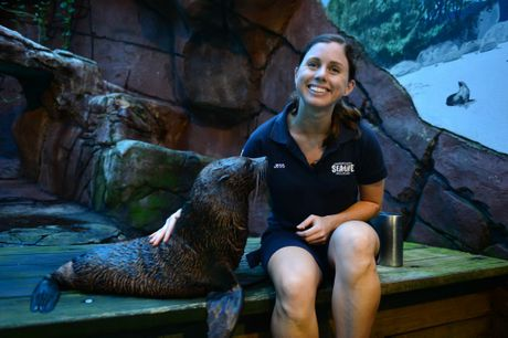 Moana, the 12 month old seal pup with Jess Heading (mammal manager) at SeaLife in Mooloolaba.