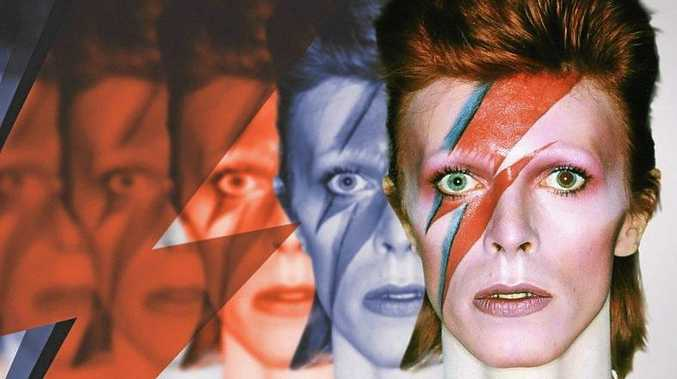 Ziggy Stardust.  Photo Contributed
