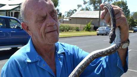 Wildlife carer Ivan Edney was killed in a head-on crash near Chinchilla.